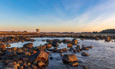 Boklansering: Integrert kystsoneforvaltning