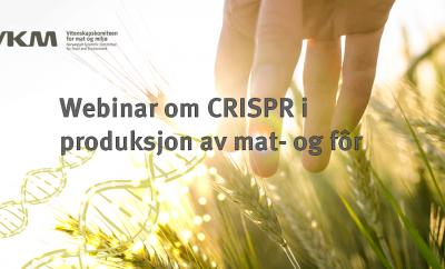 Webinar om CRISPR i produksjon av mat- og fôr 1